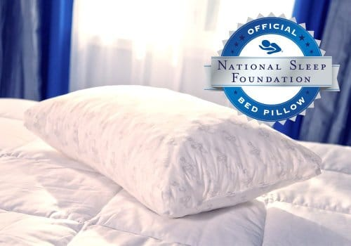 mypillow-premium-series-bed-pillow